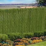 HedgeLink-slats-product-image
